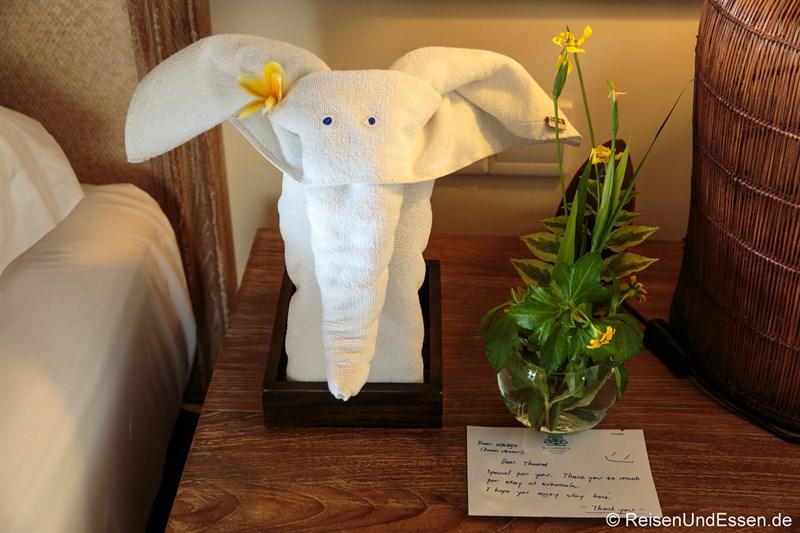 Elefant in der Suite