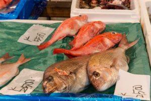 Tsukiji Tokio Fischmarkt – Ein Rundgang