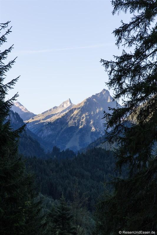 Morgendlicher Blick auf die Allgäuer Alpen