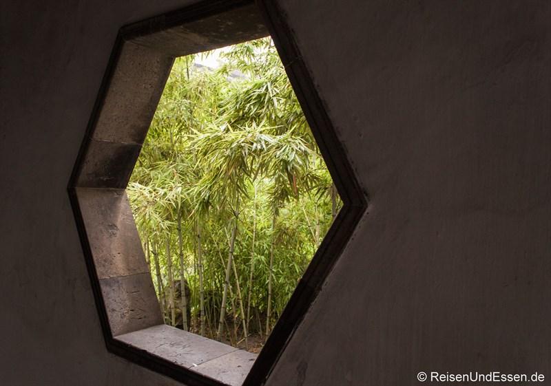 Fenster und Bambus im Lion Grove Garten