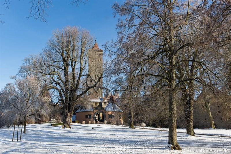 Blick vom Burggarten auf Burgtor mit Stadtmauer in Rothenburg