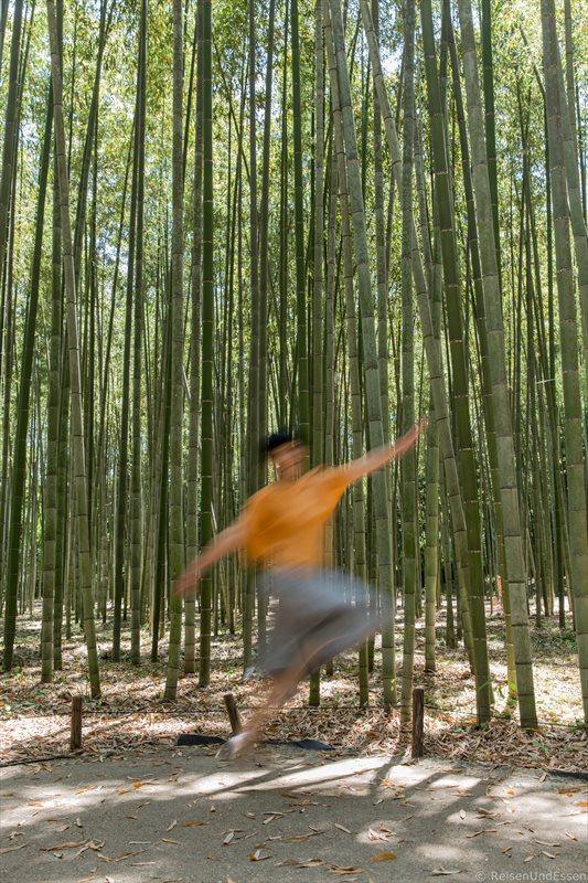 Sprünge im Bambuswald in Kyoto