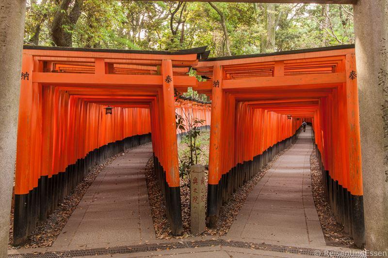 Gabelung zu zwei Torii-Wegen in Fushimi Inari