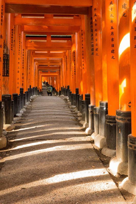 Auf der Suche nach Fotomotiven im menschenleeren Fushimi Inari