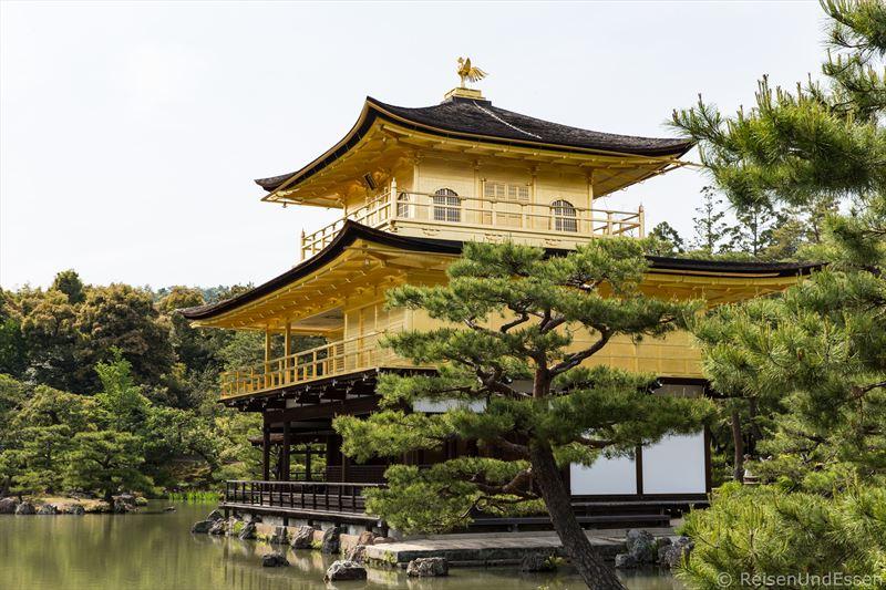 Goldener Pavillon in Kyoto
