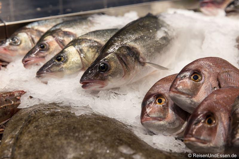 Fisch in der Theke im Frischeparadies