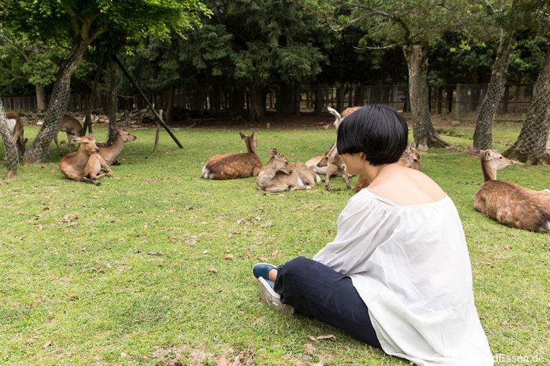 Pause mit den Hirschen im Narapark