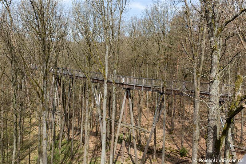 Baumwipfelpfad im Steigerwald