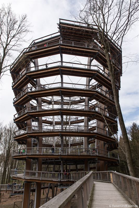 Turm im Baumwipfelpfad Steigerwald