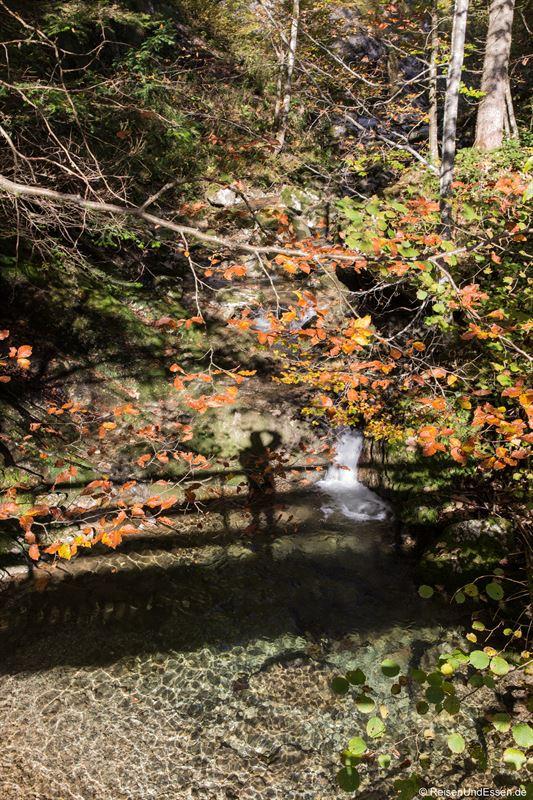 Schatten von der Brücke im Kohlenrieder Bach