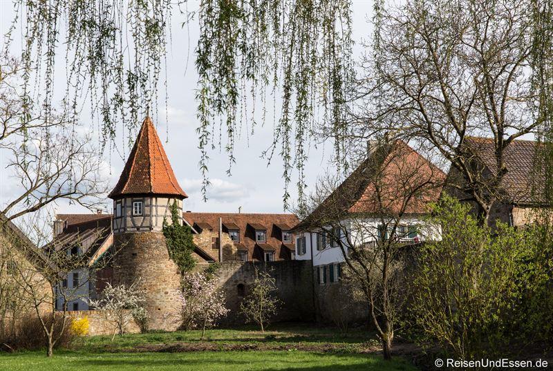 Turm und Stadtmauer in Prichsenstadt