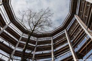 Baumwipfelpfad Steigerwald – Höhenwanderung entlang der Baumkronen