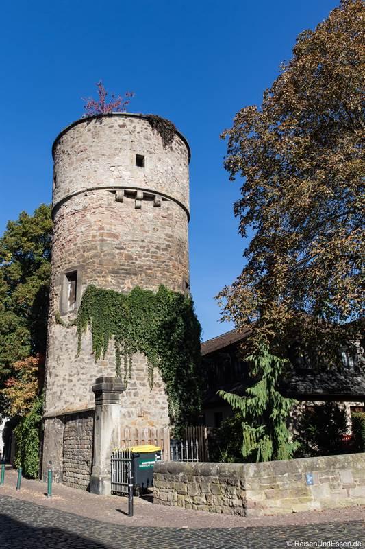 Hexenturm in Fulda