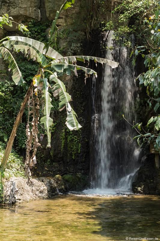 Wasserbecken bei einem kleinen Wasserfall