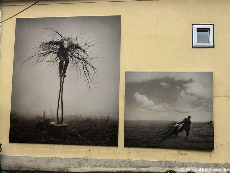 Surreale Motive von Parkeharrison beim Fotofestival La Gacilly