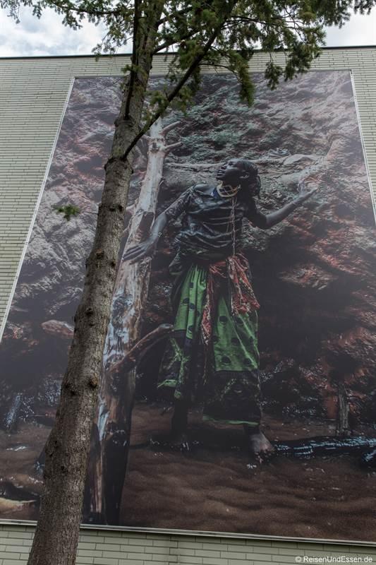 Fotografie mit Baum beim Festival La Gacilly in Baden bei Wien