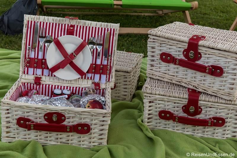 Picknick im Doblhoffpark in Baden bei Wien