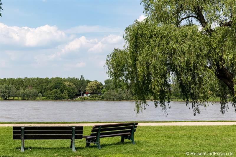 Freizeitpark Rheinaue in Bonn