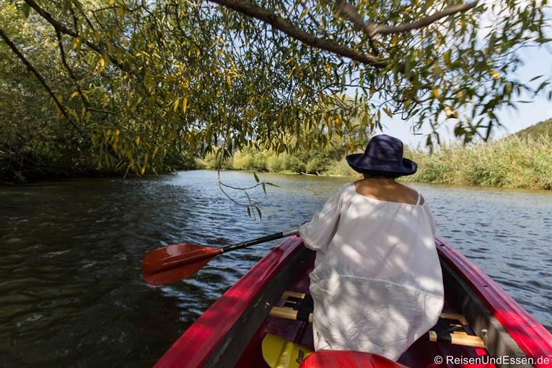 Mit dem Kanu auf der Altmühl unter einem Baum