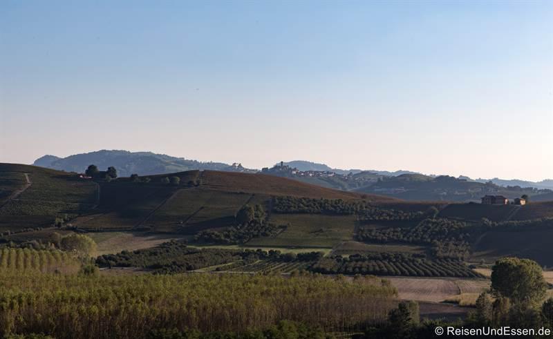 Weinanbaugebiet Barolo in Langhe im Piemont