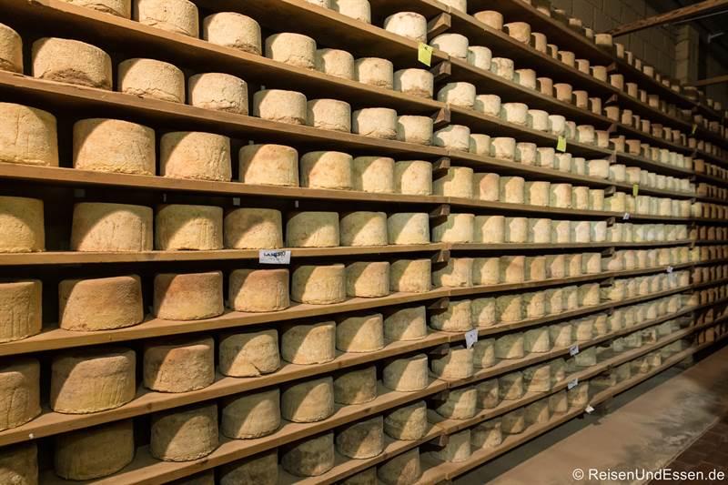 Lagerraum mit Käse im La Meiro in Chiappi
