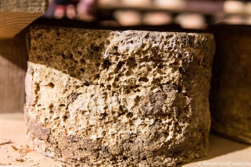 Reifer Käse Castelmagno im Käselager von La Meiro