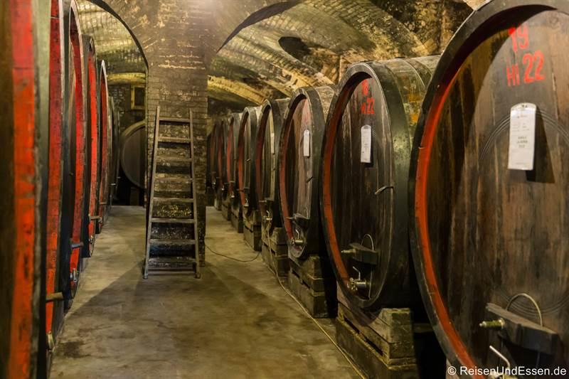 Weinkeller mit Barolo-Weinfässsern bei Marcarini in La Morra in Langhe