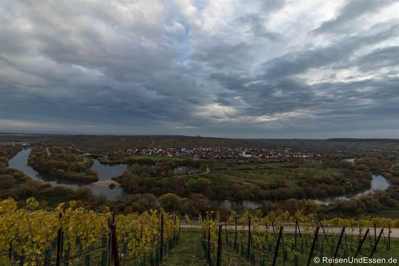 Blick von der Vogelsburg auf die Mainschleife bei Volkach