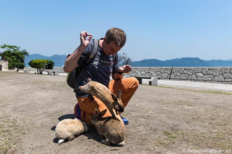 Hase springt mit seinem Futter weg  - Haseninsel in Japan