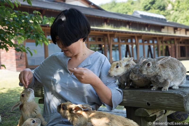 Hasen auf dem Tisch in Okunoshima
