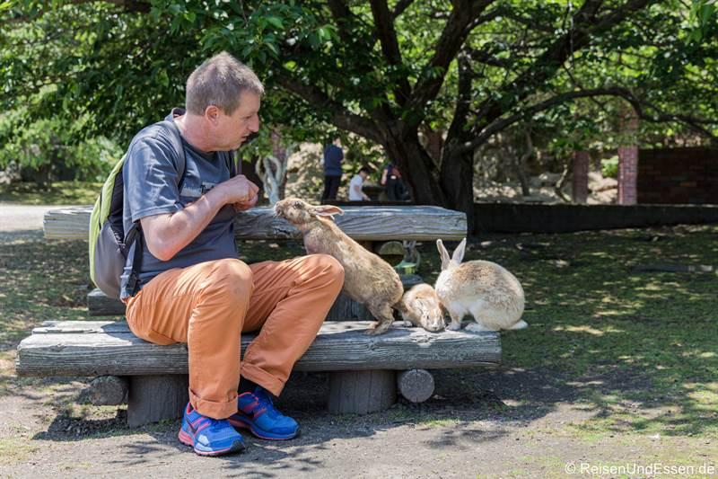 Kaninchen auf der Bank beim Füttern