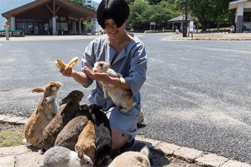 Empfang durch die Kaninchen auf der Haseninsel in Japan