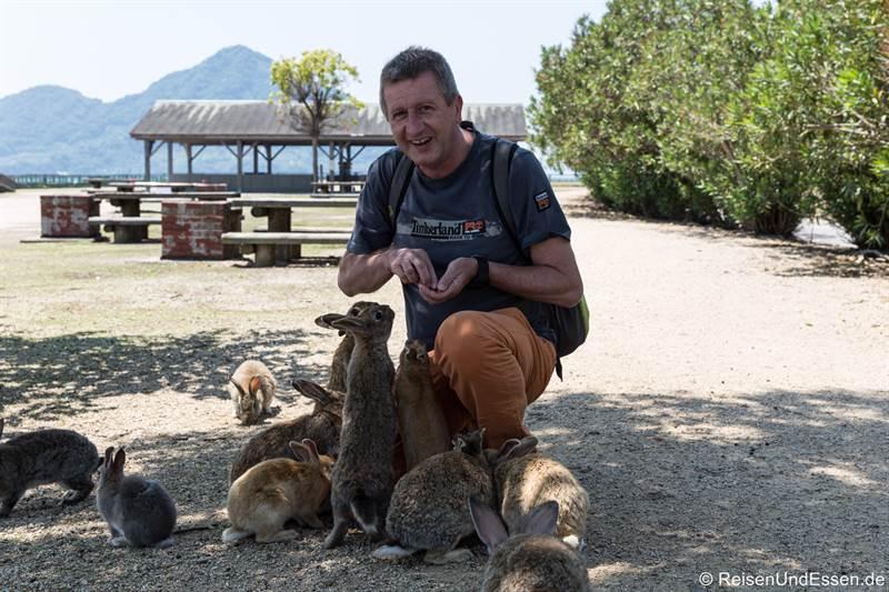 Schar von Kaninchen in Okunoshima