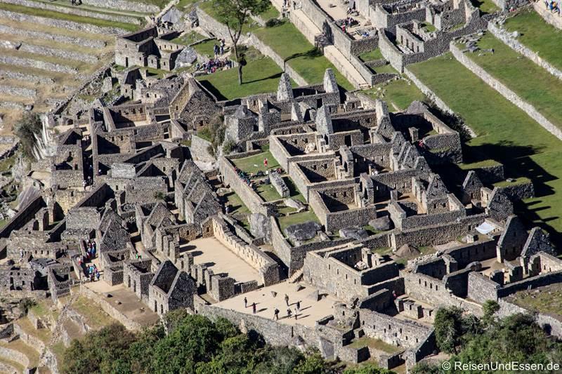 Blick vom Huayna Picchu auf die Häuser von Machu Picchu