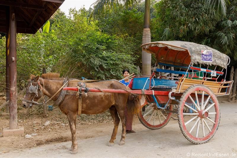 Pferdekutsche in Inwa bei Mandalay