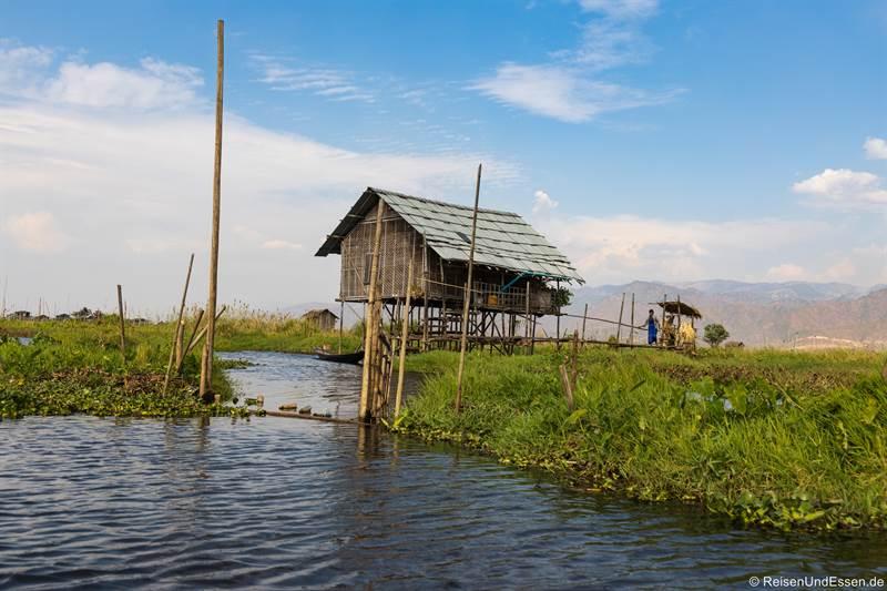 Hütte in den schwimmenden Gärten im Inle-See