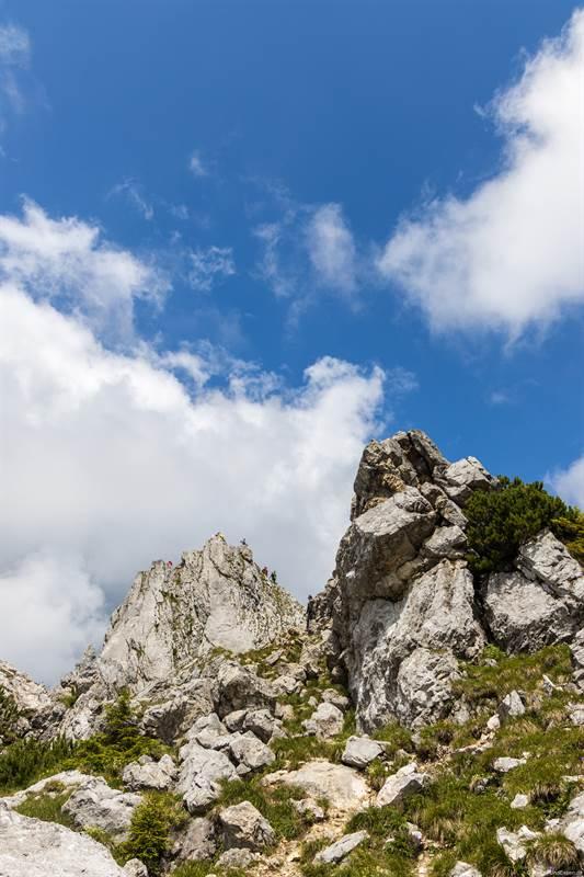 Blick auf den Gipfel vom Teufelstättkopf