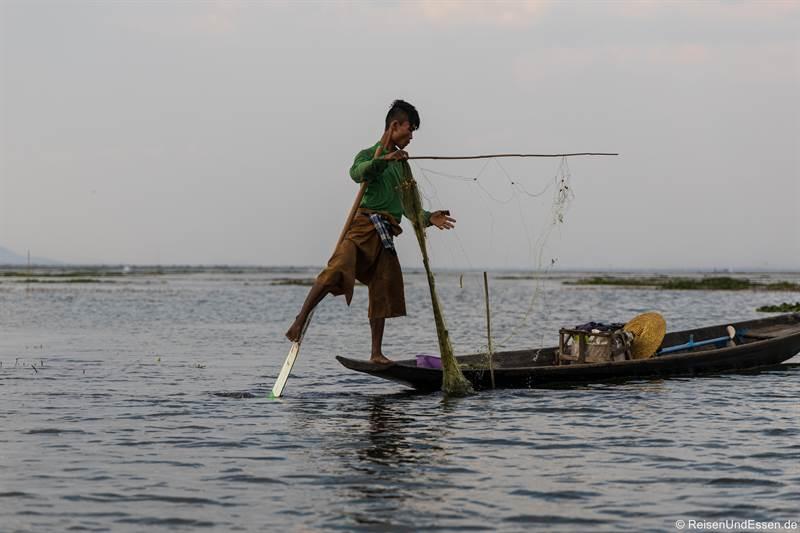 Einbeinruderer auf dem Inle See beim Fischfang