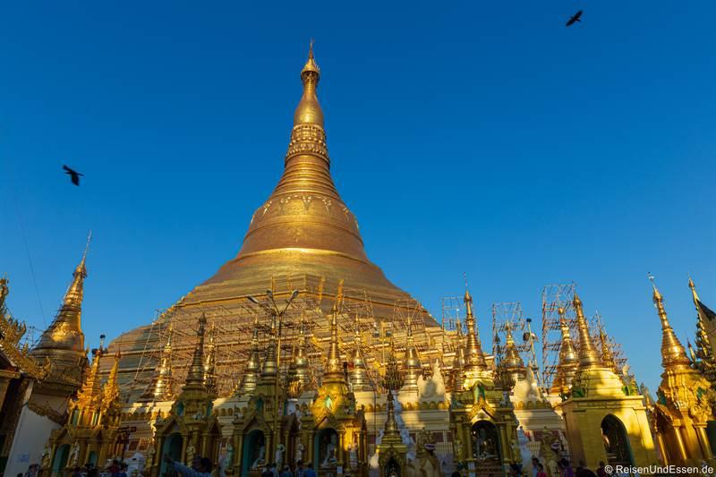 Shwedagon Pagode und Stupas - Sehenswürdigkeiten in Yangon