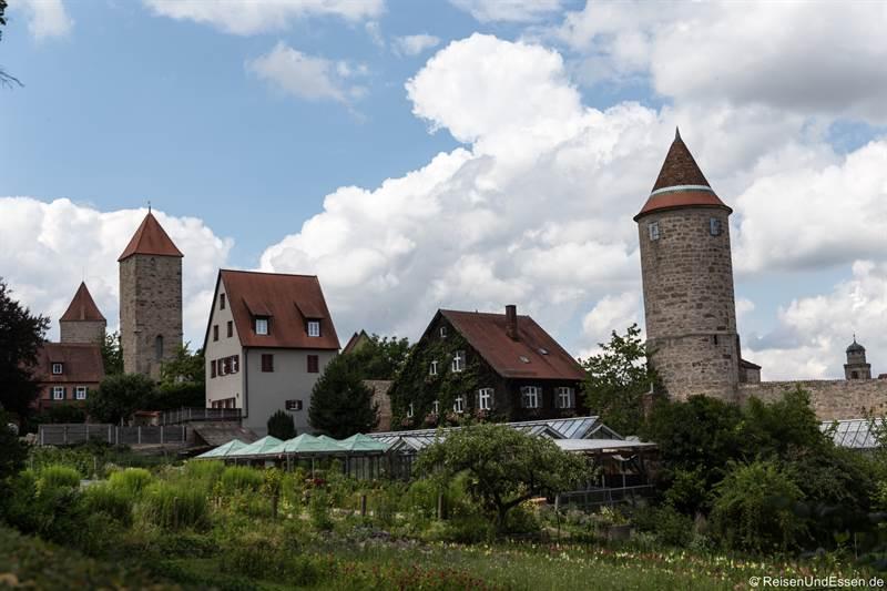 Blick auf die Altstadt und die Türme von Dinkelsbühl