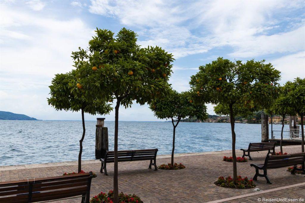 Uferpromenade in Gargnano am Gardasee
