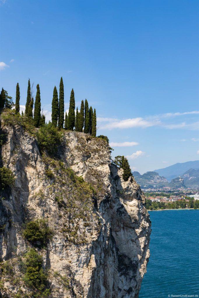 Zypressen und Felsen am Gardasee