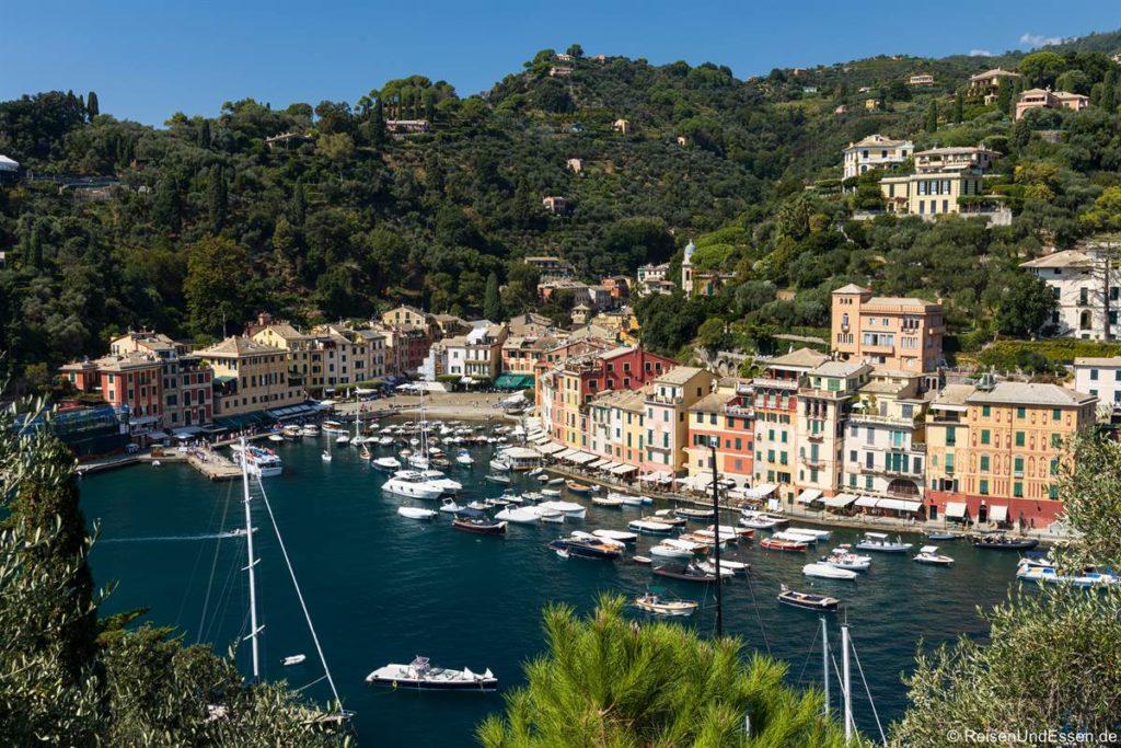 Blick auf die Häuser und Hafen von Portofino
